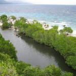 Sumilon Island (image from images.google.com.ph)